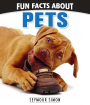 Fun Facts About Pets