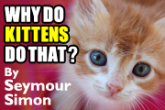 WHY DO KITTENS DO THAT? eBook Preview
